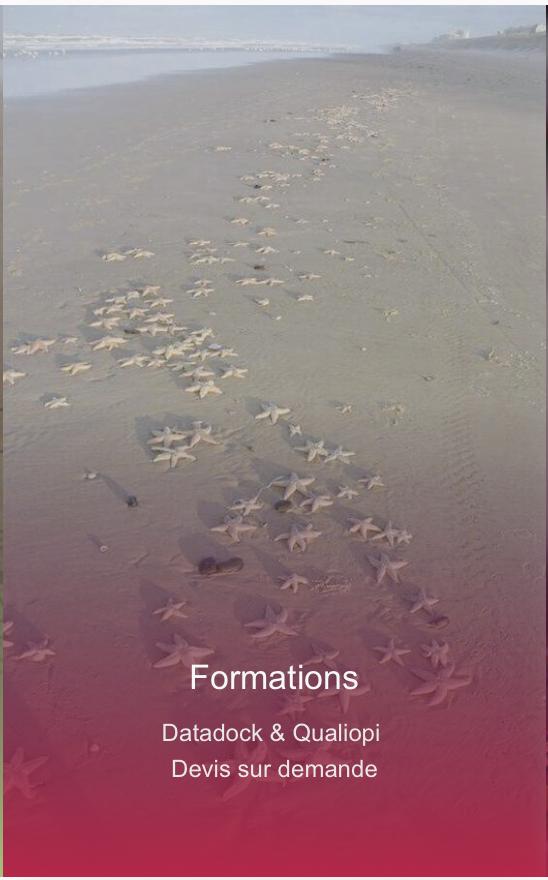 Capture d'écran 2021-08-02 à 16.21.14